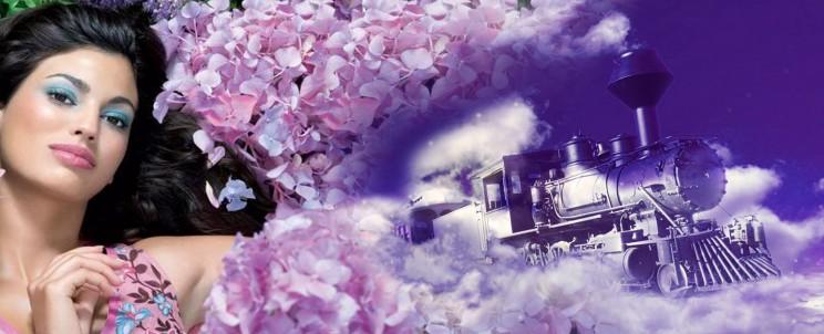 Поезд мечты